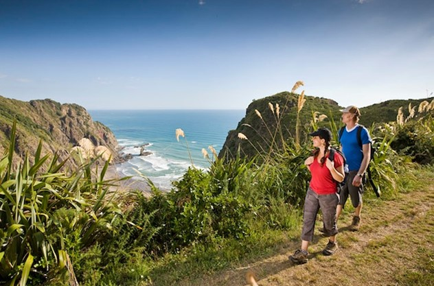 Auckland Guided Wilderness Walk - It's about the journey and the destination