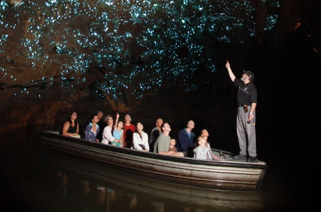 Auckland to Waitomo Caves Private Tour - Choose your adventure