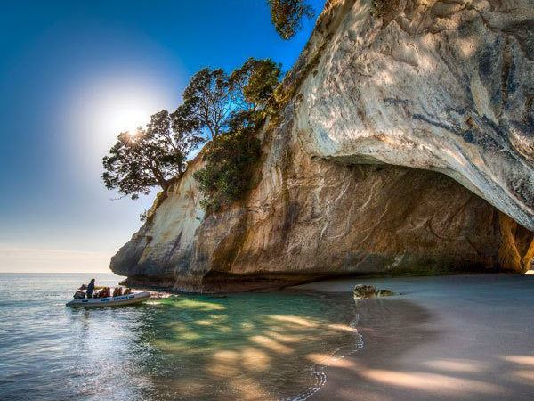 Connoisseur highlights: 5 tantalising experiences to try in New Zealand