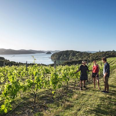 3 Day - Northland and Bay of Island Tour