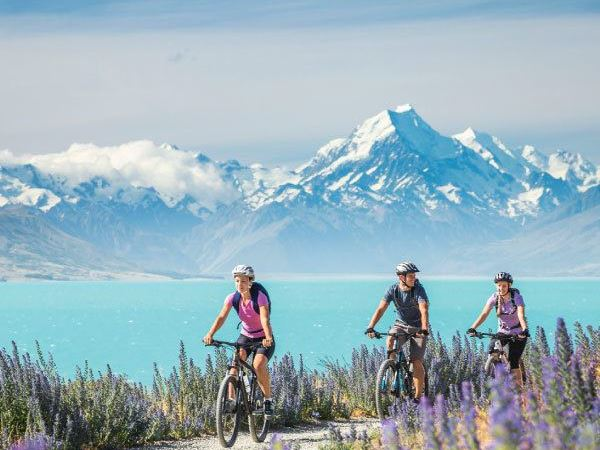 Exploring NZ with a guide – 5 ways to enhance your holiday
