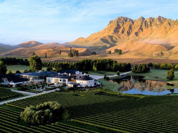6 activities that celebrate New Zealand's love affair with wine
