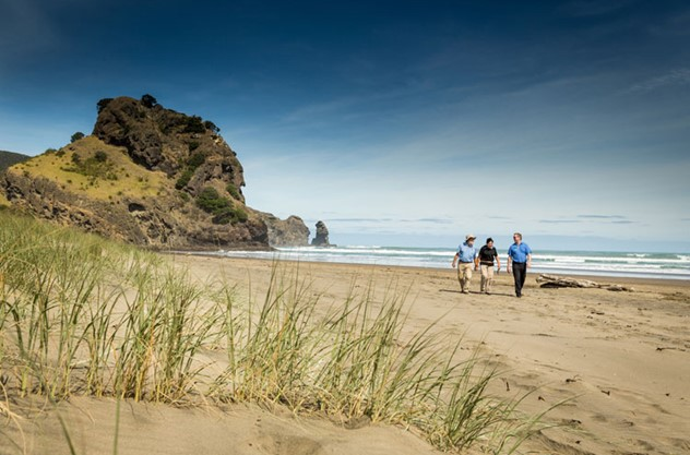 Auckland Guided Wilderness Walk - Walk along black sand beaches