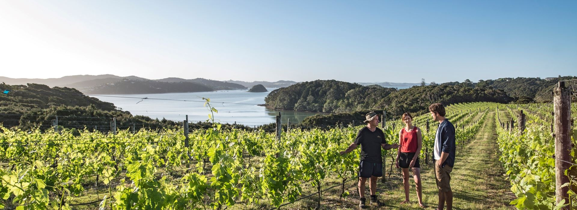 3 Day - Discover Northland and Bay of Island Tour