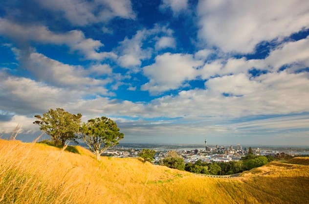 Private Auckland Luxury Tour - Set foot on dormant volcanoes